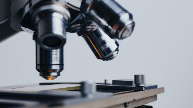 顕微鏡 検査